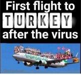 Turkey flight.jpg