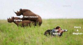THE MEDIA.jpg